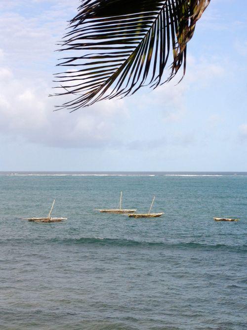 africa ocean water
