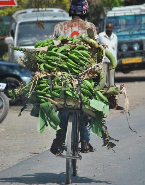 africa tanzania bananas