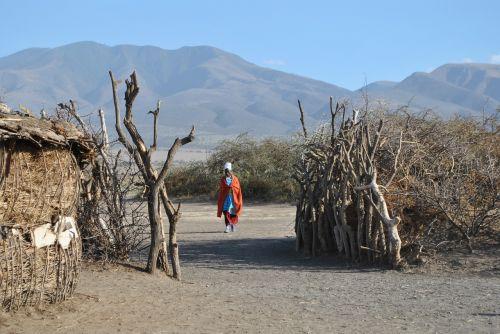 africa tanzania serengeti