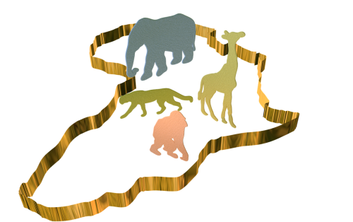 africa continent wilderness