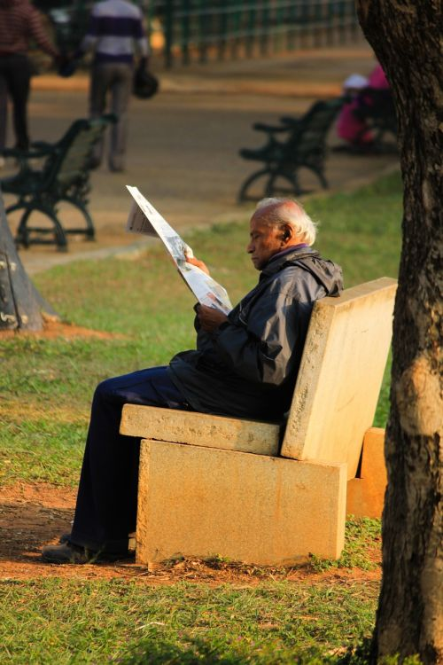 aged person reading park bench