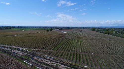 agriculture drone fumigation