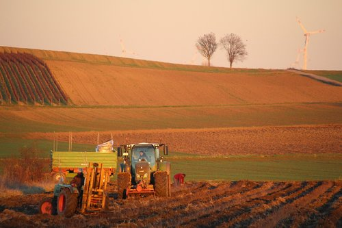 agriculture  tractor  nature