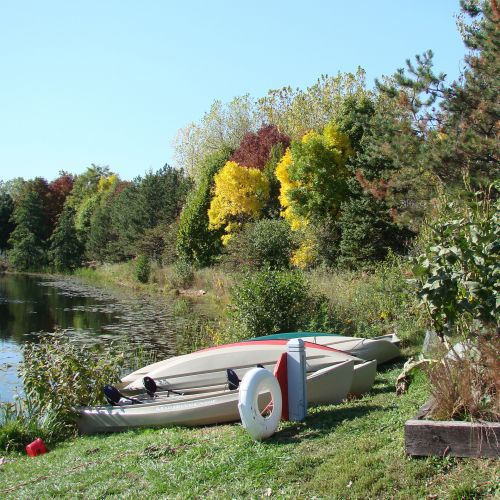 kanojos, vasara, ežeras, gamta & nbsp, rezervas, spalva, ah ... vasara
