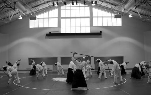 aikido martial arts self-defense