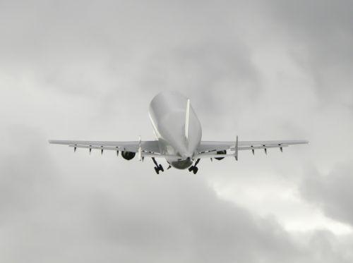 airbus beluga aircraft
