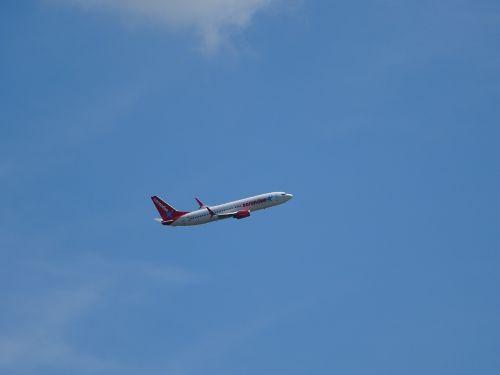 aircraft sky blue