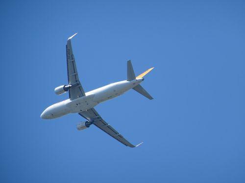 aircraft wing technology
