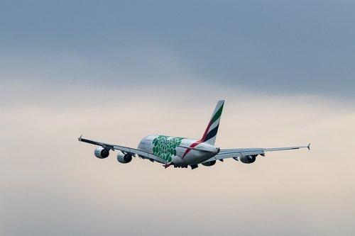 aircraft  airport  flight