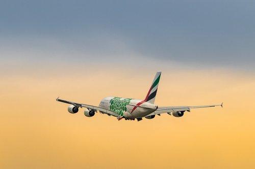 aircraft  flight  airport