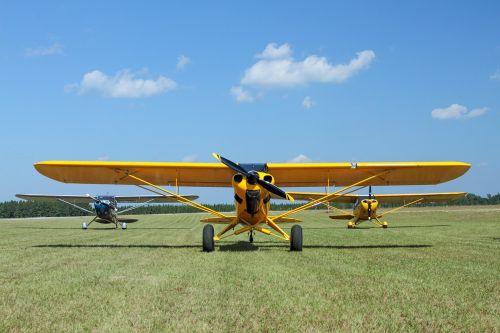 airplane super cub grass strip