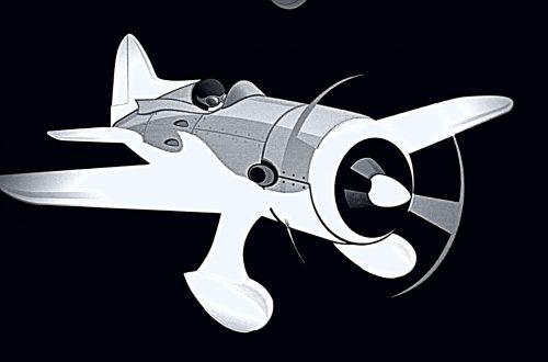 Airplane Reverse