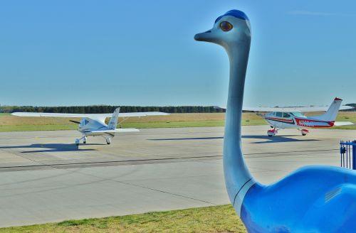 airport sport-piloting aircraft mascot