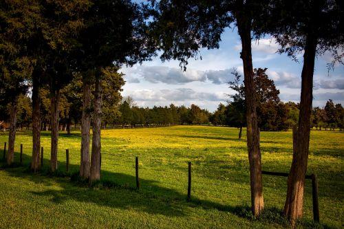 alabama farm meadow