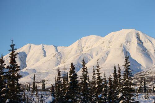 alaska mountain white
