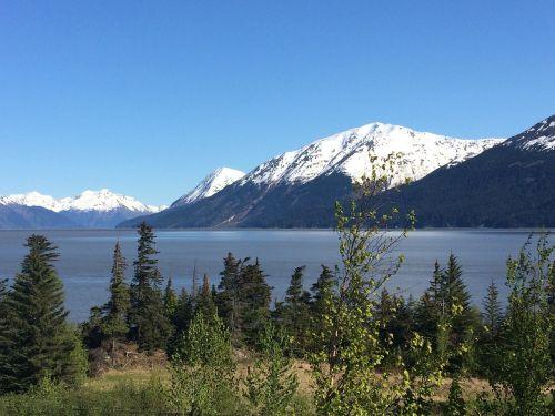 alaska bird point mountain