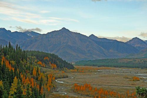 alaska wilderness glacier bed