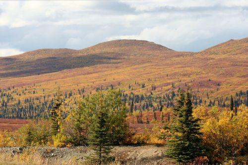 alaska landscape nature