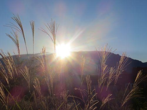 albuquerque,sandia,kalnas,saulėtekis,dangus,rytas
