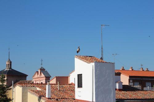 roofs alcalá stork