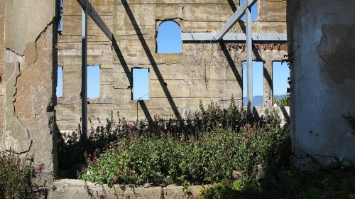 alcatraz  ruin  san francisco