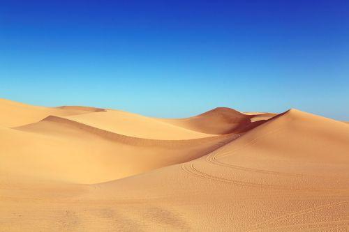 dykuma,kopos,Algodonų kopos,kopos,smėlio kopos,smėlis,gamta,platus,saulės šviesa,gamtos rezervatas,dykumos kraštovaizdis,kranto,papludimys,pėdsakai,kraštovaizdis,karštas,kopų kraštovaizdis,algodonai,carol m highsmith,Kalifornija,usa,amerikietis,Šiaurės Amerika,Jungtinės Valstijos