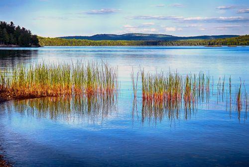 algonquin park provincial parks lakes