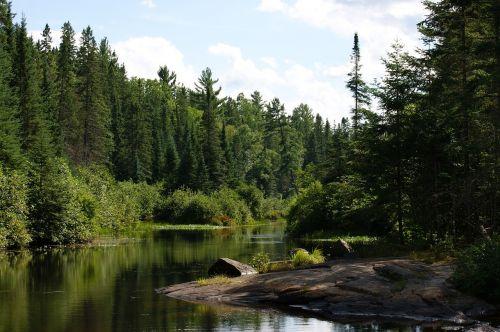 algonquin provincial park madawaska river ontario