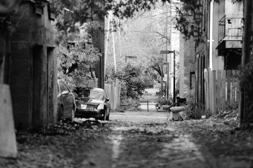 alley street fences