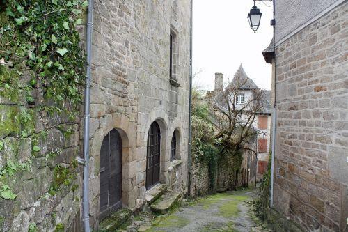 alleyway mossy walkway ivy clad