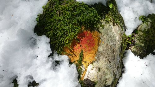 allgäu snow in may signpost