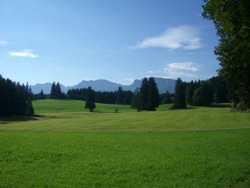 allgäu mountain panorama meadow
