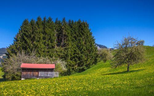 allgäu bavaria nature