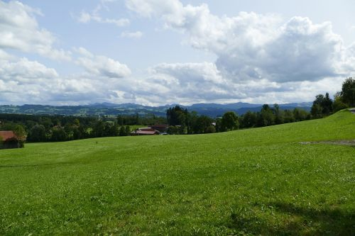 allgäu green meadows nature