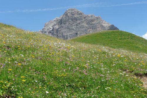 Allgäu,Alpių,aukščiausiojo lygio susitikimas,Allgäu Alpės,kalnų peizažas