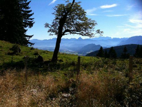 allgäu pfronten alpine pointed