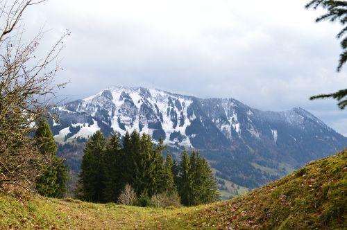 allgäu mountains greened