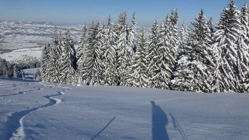allgäu greened winter