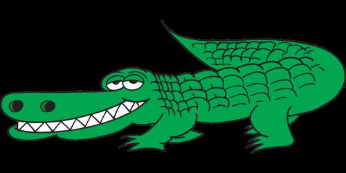 alligator view side