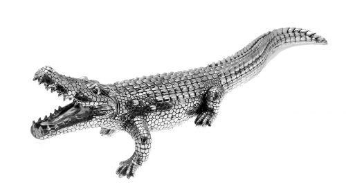 alligator crocodile silver
