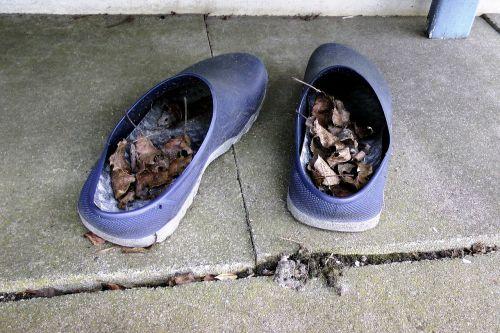 allotment garden shoes blue