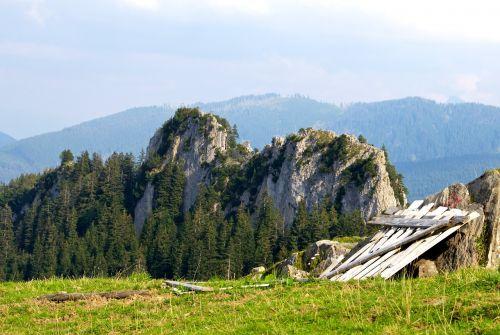 greened bavaria giggelstein