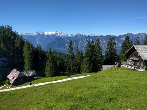 alm hiking alpine