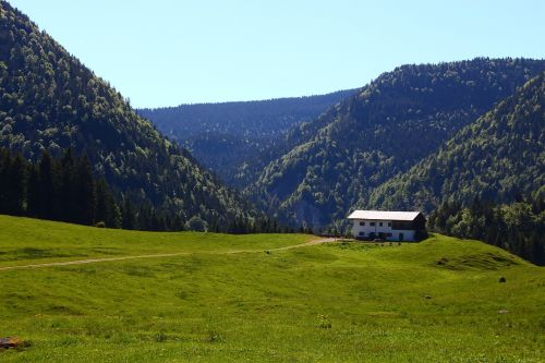 alm mountain alpine