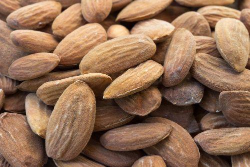 almond stone seeds