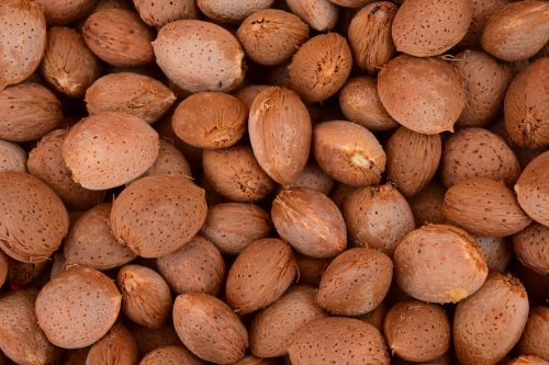 almonds background frisch