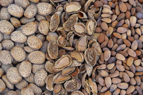 almonds dried fruits fruit