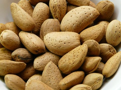 almonds nuts shell