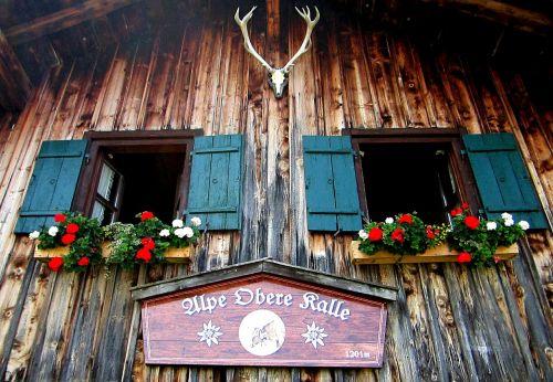 alpe hut alm