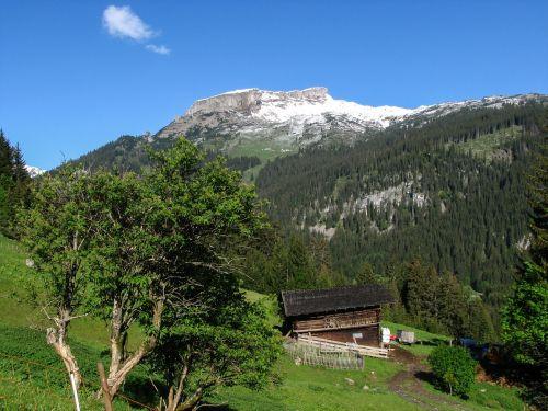 Alpių,kleinwalsertal,aukštas ifen,pavasaris,kalnas,sniegas,austria,kalnai,aukšti kalnai,snieguotas,schwarzwassertal,aukščiausiojo lygio susitikimas,žygis,bergtour,kalnų žygis,žygiai